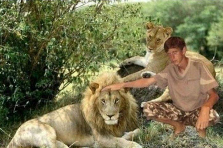 Pochybujeme, že by ten lev byl takto pohlazen ...