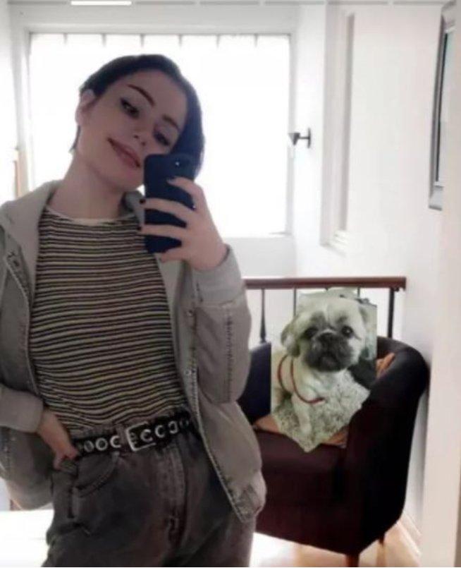 100% skutečný pes ... nebo ne?